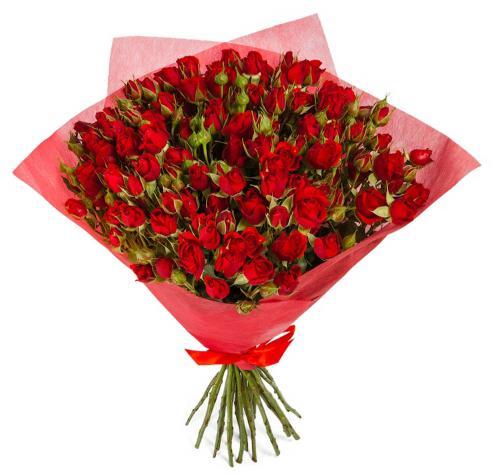 15 кустовых красных роз